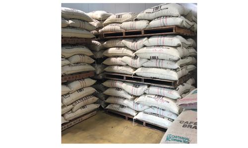 萩原珈琲が原産国から輸入した豆