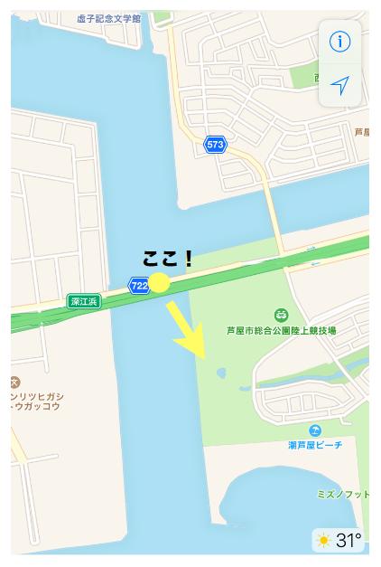 南芦屋浜深江浜連絡橋の場所