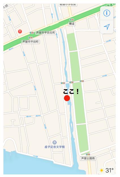 芦屋川の河川敷